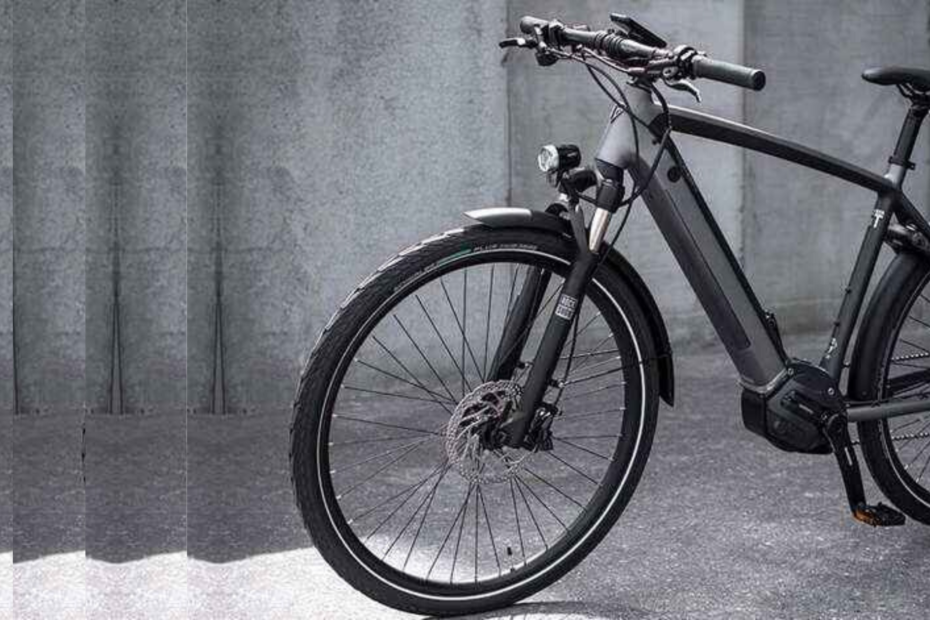 Electric Bicycle With Bike Features, Price In Lakhs!